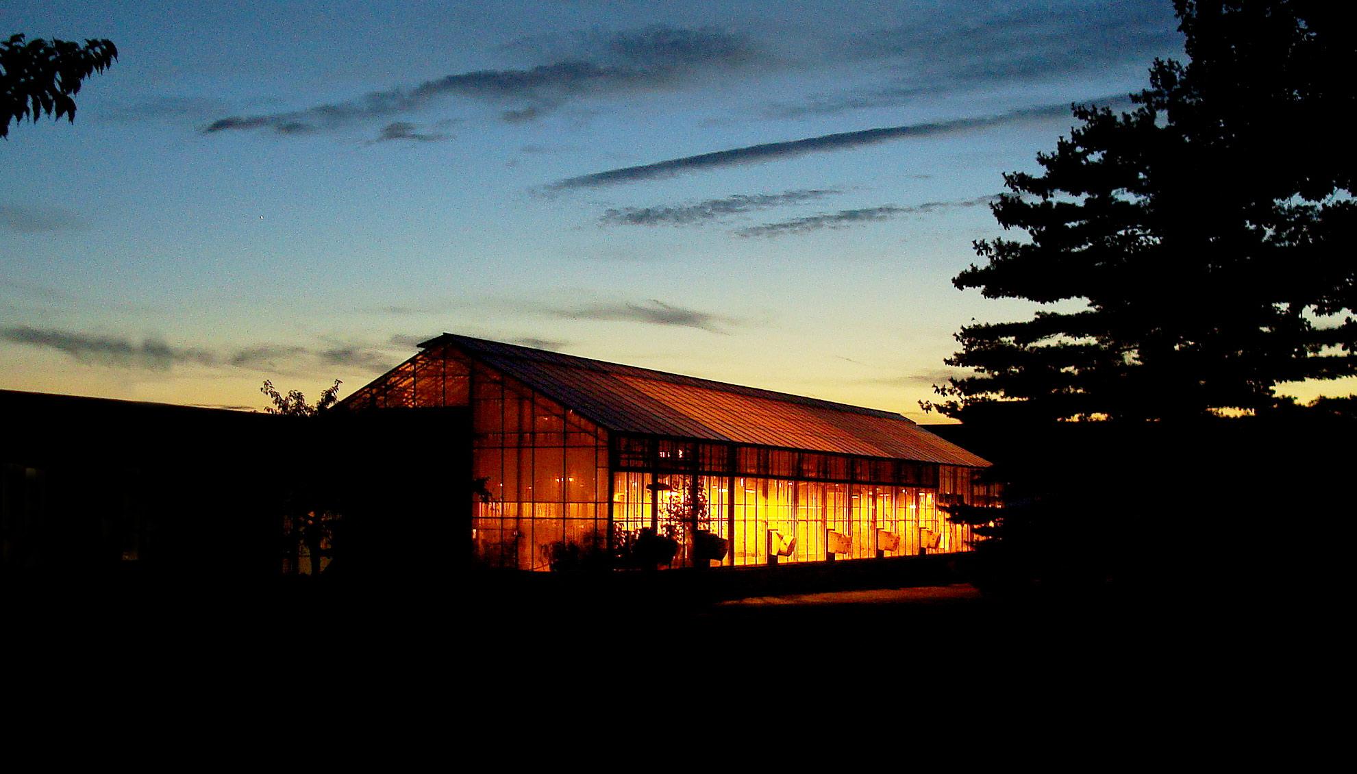 Växthuset på natten