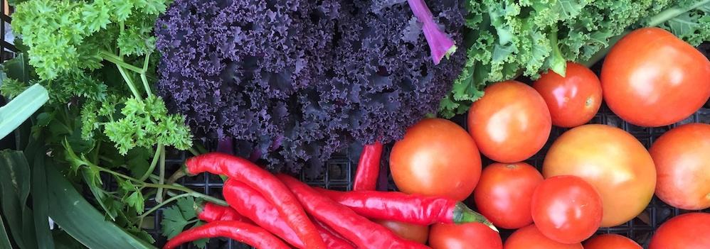 Grönsaker-1-IMG_5209-1